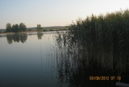 photo178
