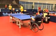 Чемпионат Европы по настольному теннису среди инвалидов-колясочников 2015 года